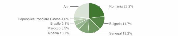 Grafico cittadinanza stranieri - Carmiano 2019