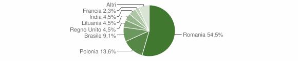 Grafico cittadinanza stranieri - Sogliano Cavour 2013