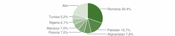 Grafico cittadinanza stranieri - Sogliano Cavour 2016