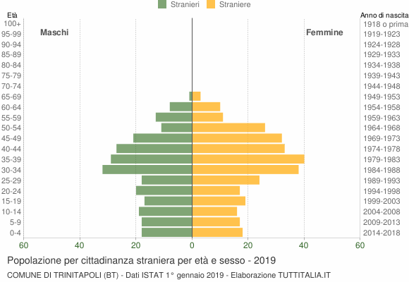 Grafico cittadini stranieri - Trinitapoli 2019