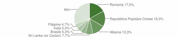 Grafico cittadinanza stranieri - Cavallino 2019