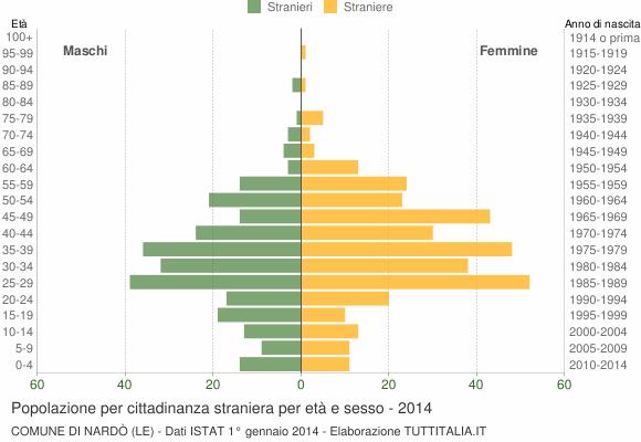 Grafico cittadini stranieri - Nardò 2014