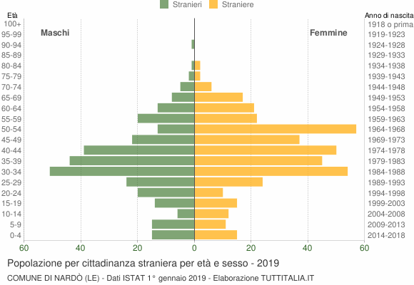 Grafico cittadini stranieri - Nardò 2019