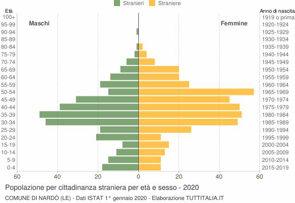 Grafico cittadini stranieri - Nardò 2020