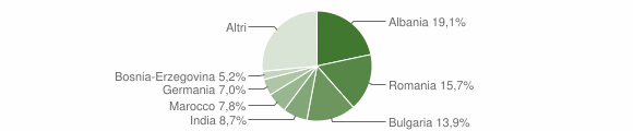 Grafico cittadinanza stranieri - Arnesano 2010