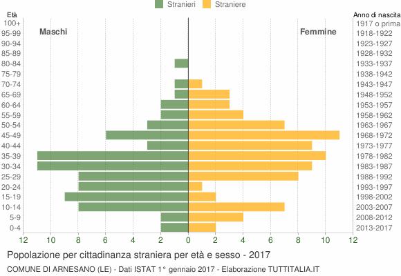 Grafico cittadini stranieri - Arnesano 2017