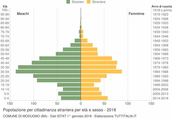 Grafico cittadini stranieri - Modugno 2018