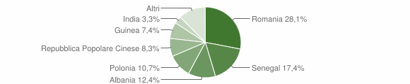 Grafico cittadinanza stranieri - Novoli 2010