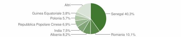 Grafico cittadinanza stranieri - Novoli 2013