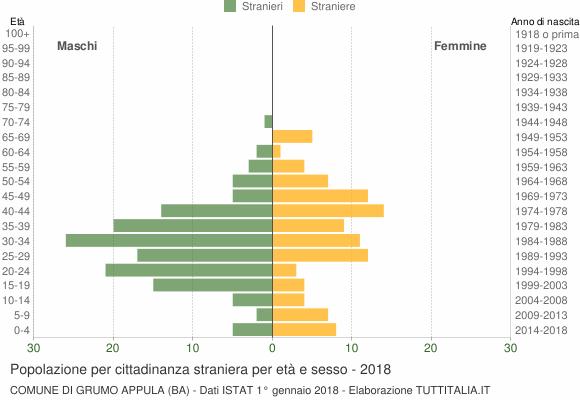 Grafico cittadini stranieri - Grumo Appula 2018