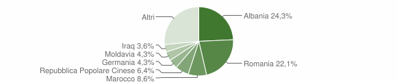 Grafico cittadinanza stranieri - Melendugno 2009
