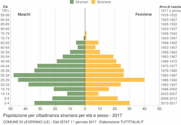 Grafico cittadini stranieri - Leverano 2017