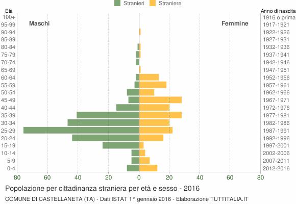 Grafico cittadini stranieri - Castellaneta 2016