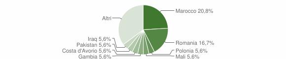 Grafico cittadinanza stranieri - Patù 2019