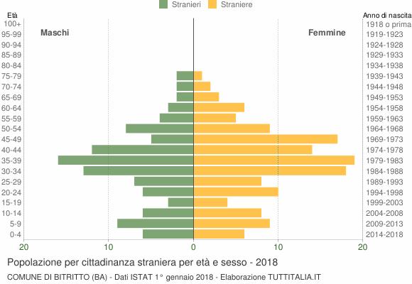 Grafico cittadini stranieri - Bitritto 2018