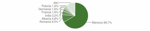 Grafico cittadinanza stranieri - Guagnano 2013
