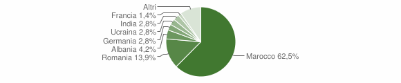 Grafico cittadinanza stranieri - Guagnano 2015