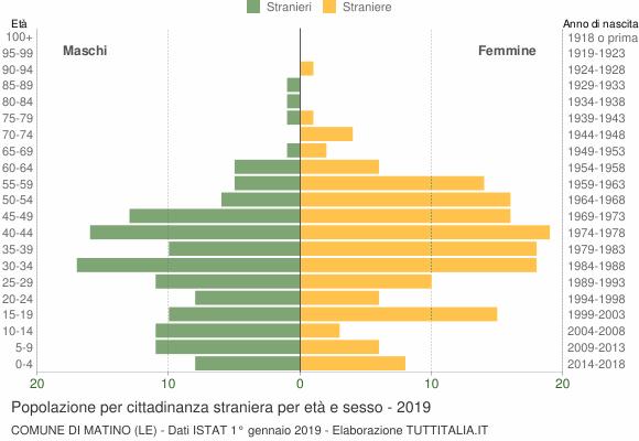 Grafico cittadini stranieri - Matino 2019