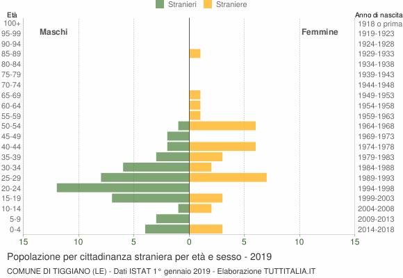 Grafico cittadini stranieri - Tiggiano 2019