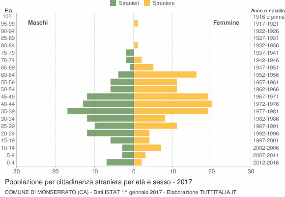 Grafico cittadini stranieri - Monserrato 2017