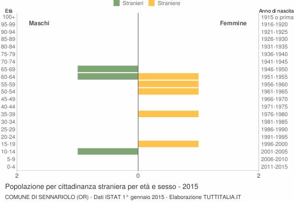 Grafico cittadini stranieri - Sennariolo 2015