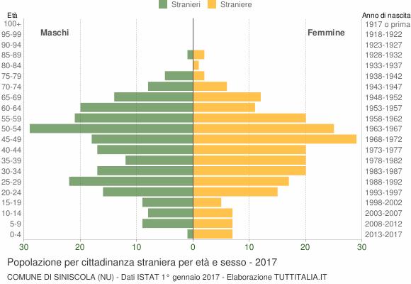 Grafico cittadini stranieri - Siniscola 2017