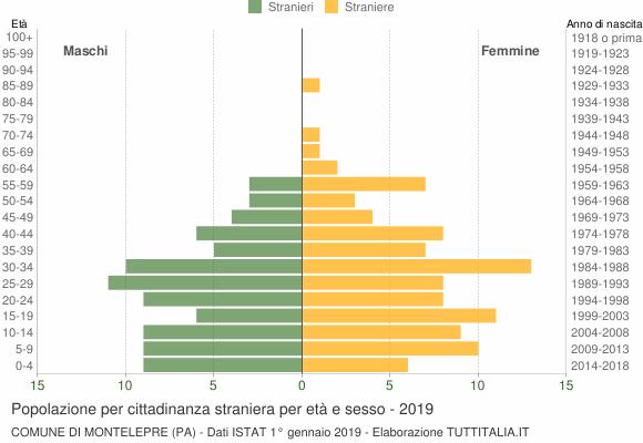 Grafico cittadini stranieri - Montelepre 2019