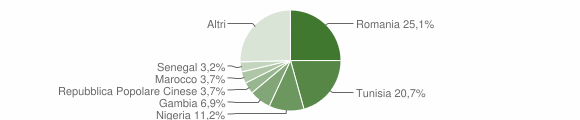 Grafico cittadinanza stranieri - Castelvetrano 2019
