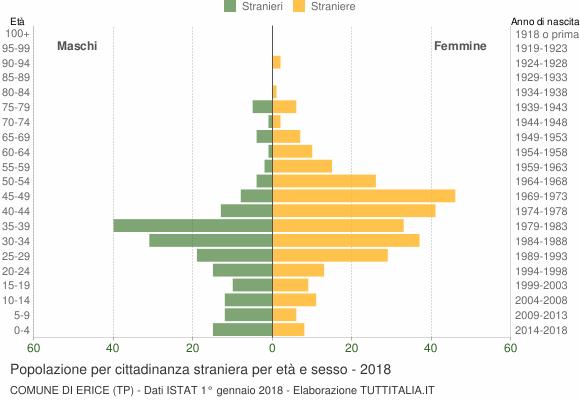 Grafico cittadini stranieri - Erice 2018