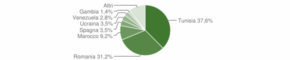 Grafico cittadinanza stranieri - Santa Ninfa 2018