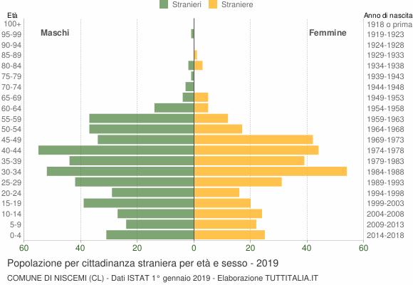 Grafico cittadini stranieri - Niscemi 2019