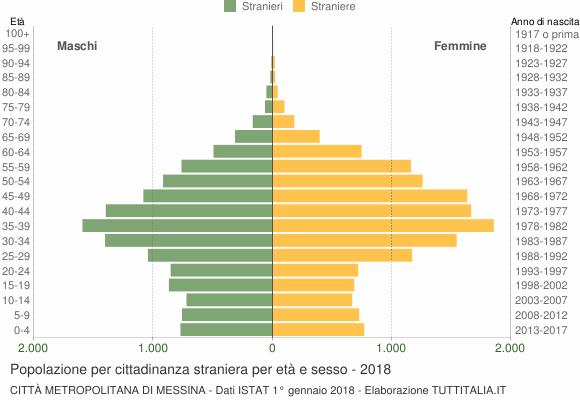 Grafico cittadini stranieri - 2018