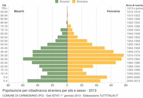 Grafico cittadini stranieri - Carmignano 2013