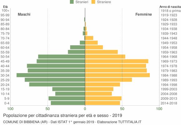 Grafico cittadini stranieri - Bibbiena 2019