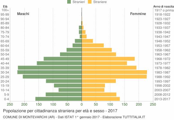 Grafico cittadini stranieri - Montevarchi 2017