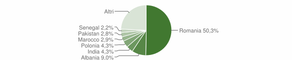 Grafico cittadinanza stranieri - Monte San Savino 2018