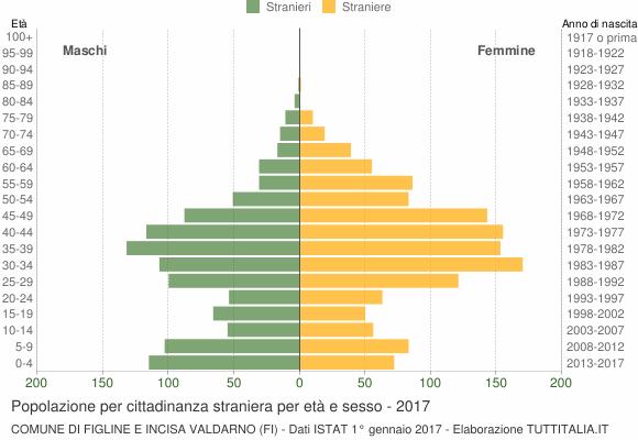 Grafico cittadini stranieri - Figline e Incisa Valdarno 2017