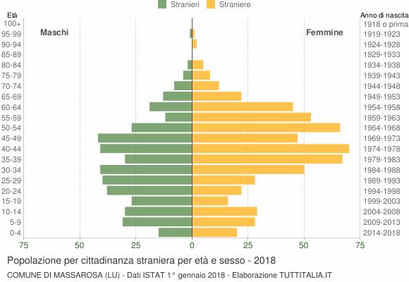 Grafico cittadini stranieri - Massarosa 2018