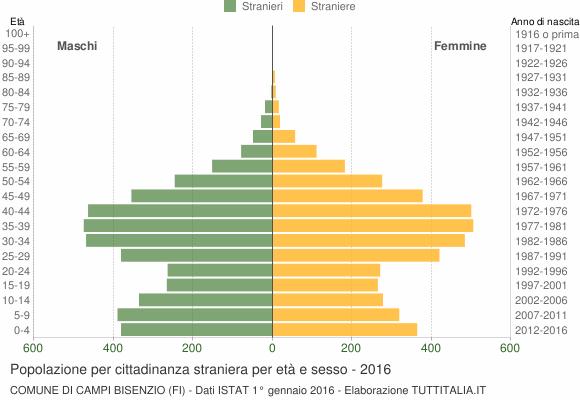 Grafico cittadini stranieri - Campi Bisenzio 2016