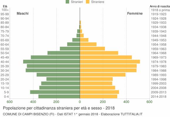Grafico cittadini stranieri - Campi Bisenzio 2018