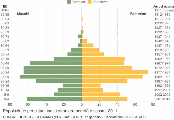 Grafico cittadini stranieri - Poggio a Caiano 2011
