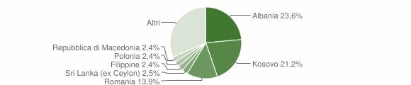 Grafico cittadinanza stranieri - Castelnuovo Berardenga 2019