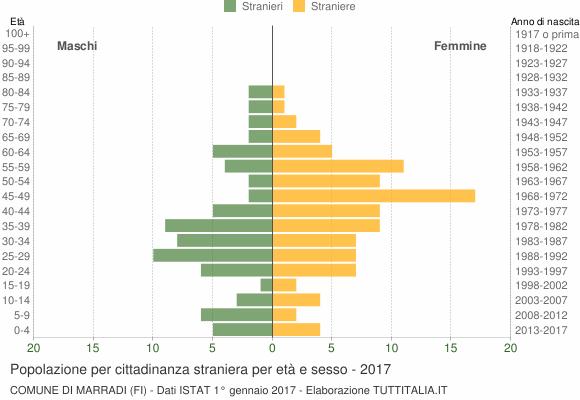 Grafico cittadini stranieri - Marradi 2017