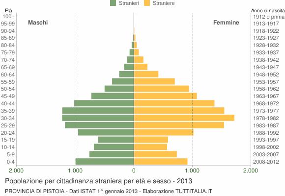 Grafico cittadini stranieri - 2013