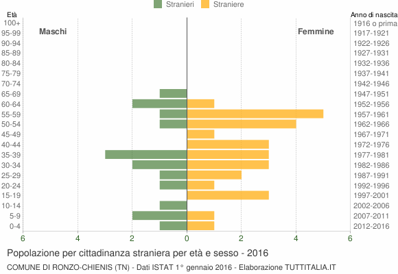 Grafico cittadini stranieri - Ronzo-Chienis 2016