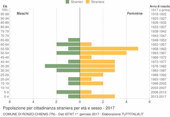 Grafico cittadini stranieri - Ronzo-Chienis 2017