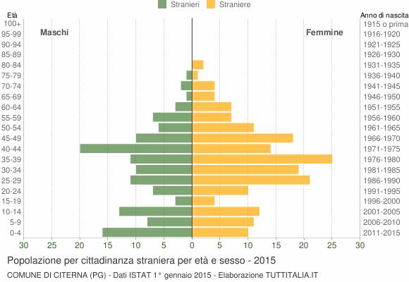Grafico cittadini stranieri - Citerna 2015