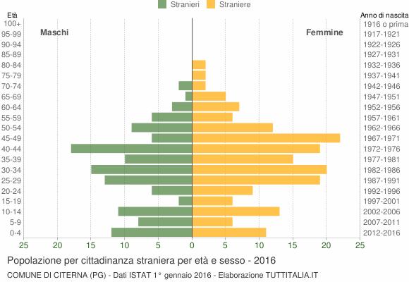 Grafico cittadini stranieri - Citerna 2016