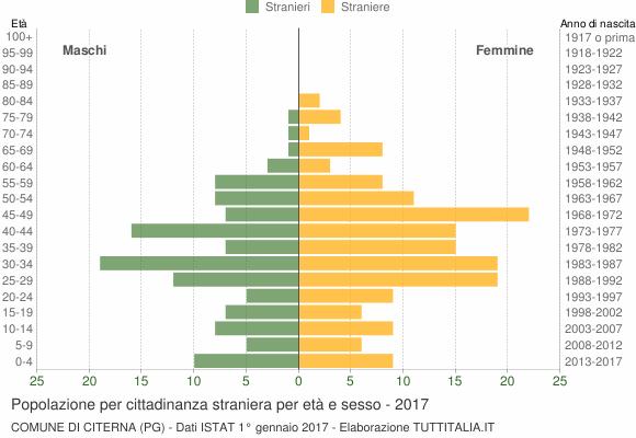 Grafico cittadini stranieri - Citerna 2017