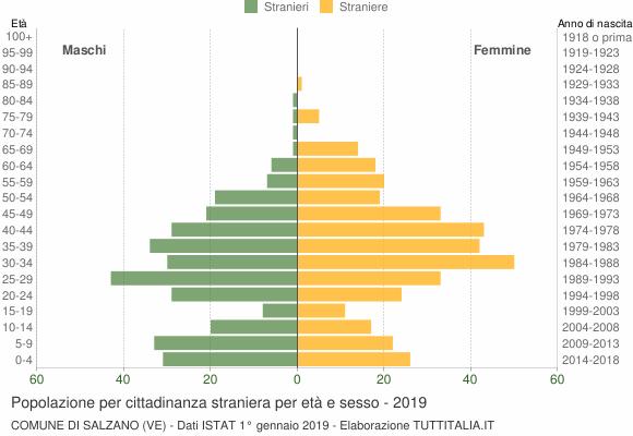 Grafico cittadini stranieri - Salzano 2019
